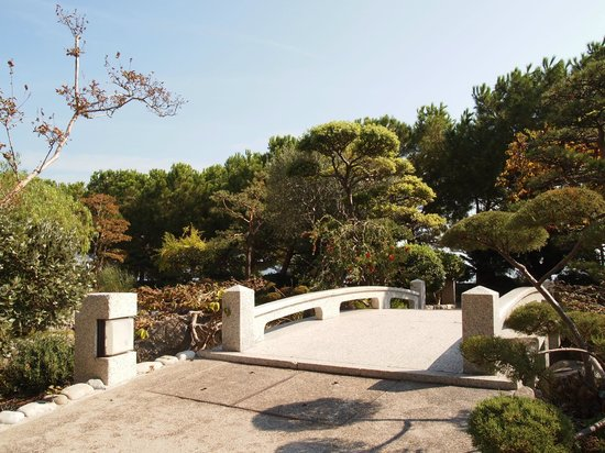 Japanese Gardens: garden