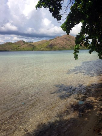 El Rio y Mar Resort : Crystal clear water but watch out for jelly fish