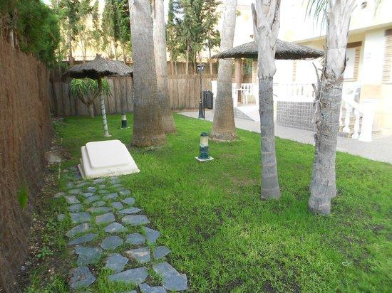Aparthotel Atlas : Jardin