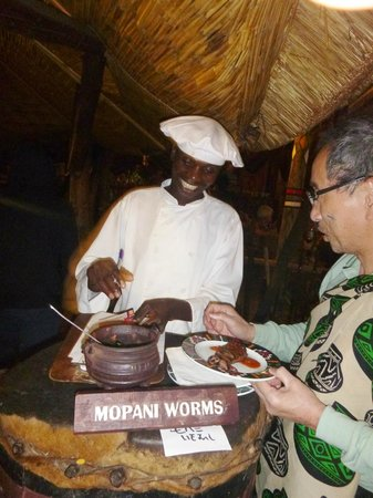 The Boma - Dinner & Drum Show: Worms anyone?