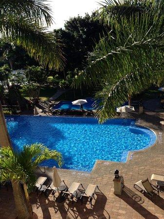 Costa Rica Marriott Hotel San Jose : Swimming Pool & Gardens