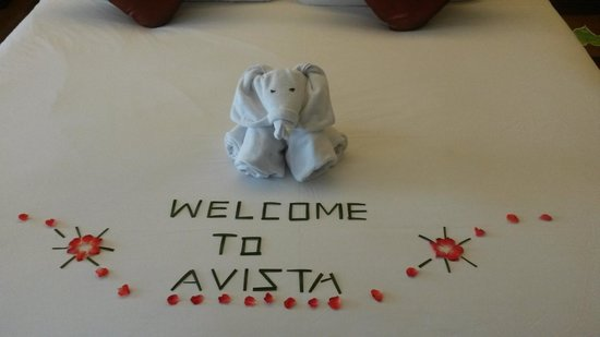 Novotel Phuket Kata Avista Resort and Spa: Chambre