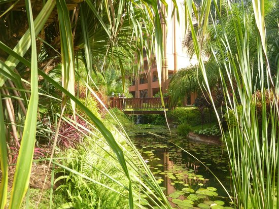 Kampala Serena Hotel: Peaceful stream in hotel gardens