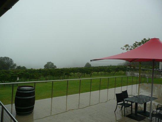 Flame Hill Vineyard: No vista the day we visit.