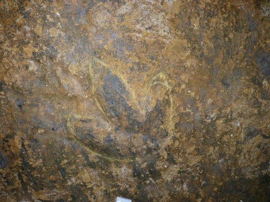 Abime de Bramabiau : A dinosaur footprint