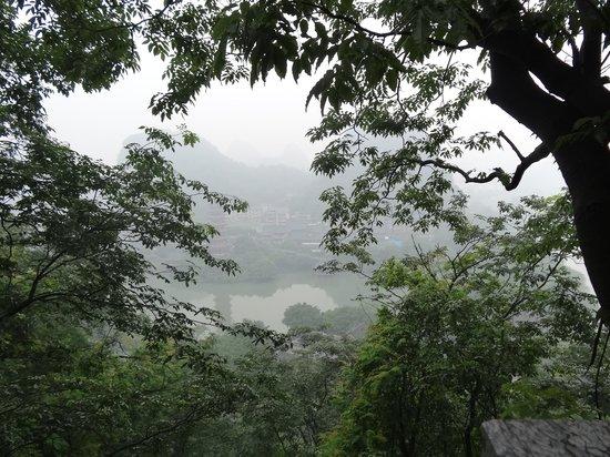 Folded Brocade Hill (Diecai Hill): A peek through the tree tops