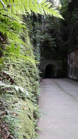 Sarushima Island (Monkey Island): Tunnel.