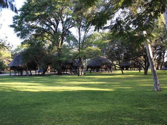 Cresta Marang And Residency : Chalets