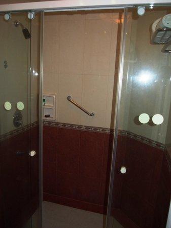 The Residency Towers: Bathroom