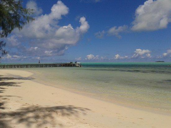 Carp Island Resort : Spiaggia