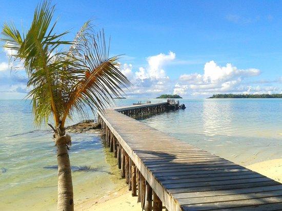 Carp Island Resort : Pontile