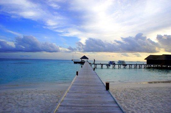 Mirihi Island Resort: Serenity at Mirihi