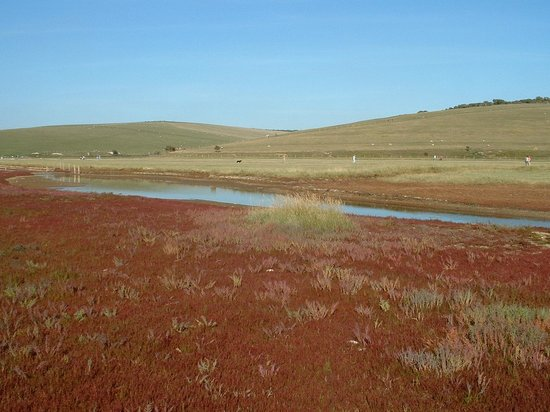Seven Sisters Country Park: Stunning colours