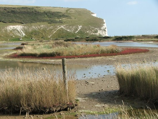 Seven Sisters Country Park: Cuckmere haven