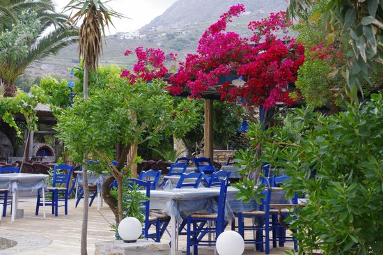 Alexandros-Vassilia: Breakfast area seen from the beach