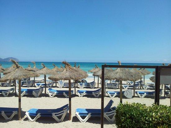 Grupotel Dunamar: Strand set fra hotel