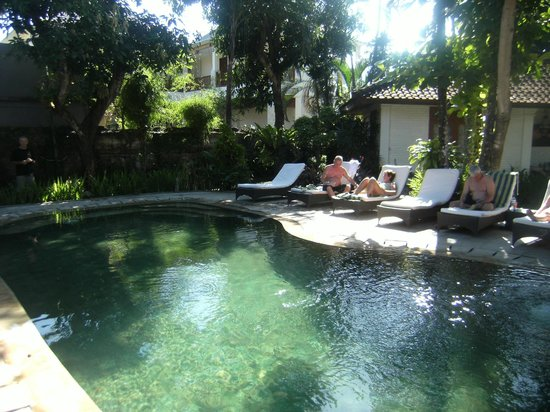Prima Cottage: The attractive pool area