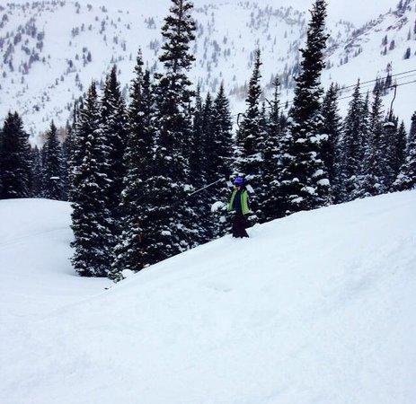 Alta Ski Resort: Alta Powder Day