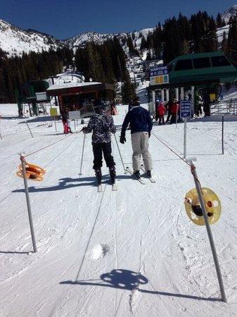 Alta Ski Resort: No Lines