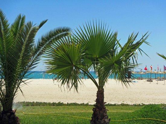 Hotel Palace Hammamet Marhaba : Blick von unserem Zimmer auf das Meer
