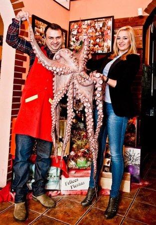 ALIOLI : Cea mai mare caracatita din Romania!!!
