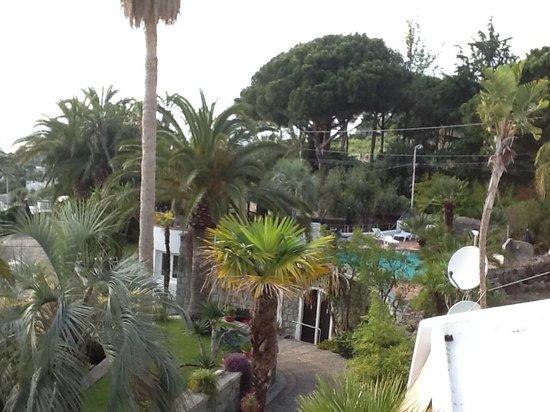 Paco Residence: вид с апартаментов на море