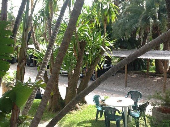 Paco Residence: территория апартаментов