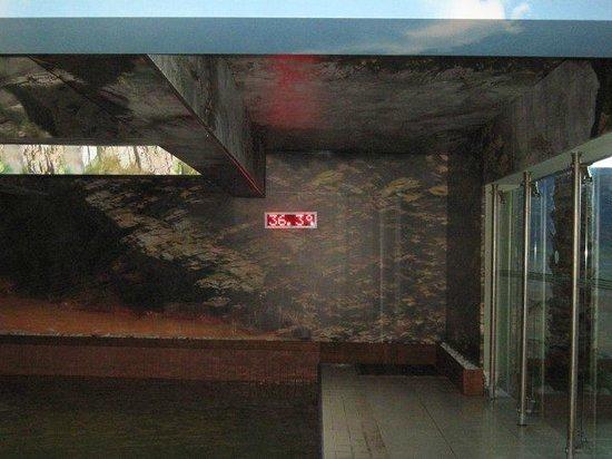 Ilica Hotel Spa & Thermal Resort: Mud pool