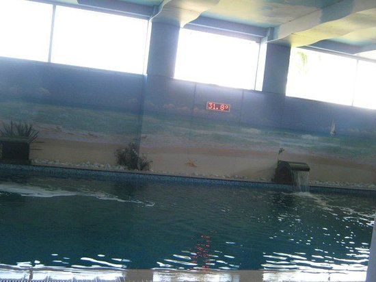 Ilica Hotel Spa & Thermal Resort: Pool