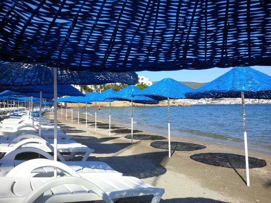 Dolce Bodrum Hotel and Beach club: Beach area