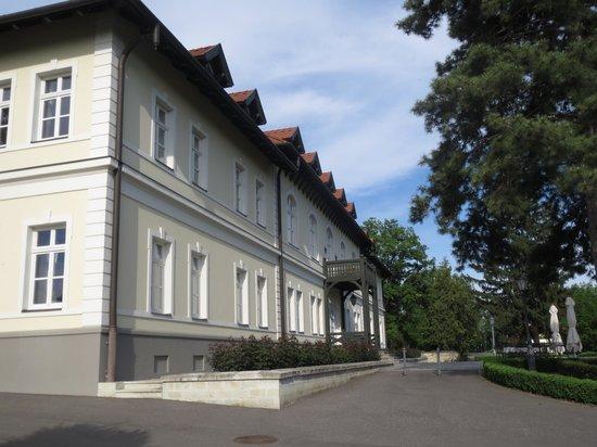 Grof Degenfeld Castle Hotel: The front