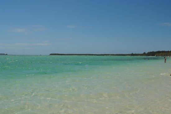 Barcelo Bavaro Beach - Adults Only: La playa es magnífica