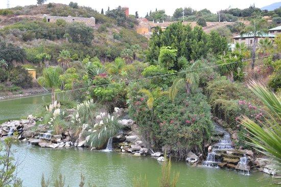 Selwo Aventura : в парке