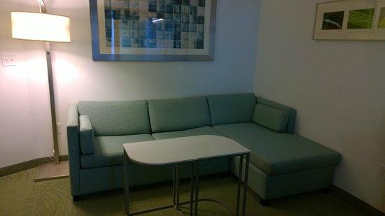 SpringHill Suites Atlanta Airport Gateway : Living room area