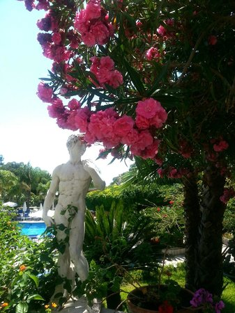 Sant Alphio Garden Hotel & Spa: Beautiful flowers surrounding pool