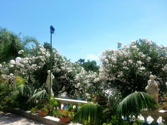Sant Alphio Garden Hotel & Spa: Beautiful nature