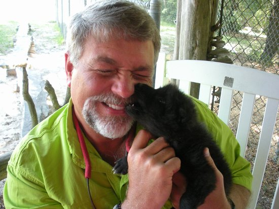 Seacrest Wolf Preserve: Wolf Puppy time!