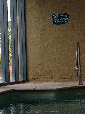 Madison Spa Resort : Mouldy walls in 'plunge pool' area.
