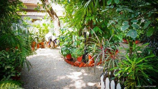 Green Woods-Bethlehem: garden