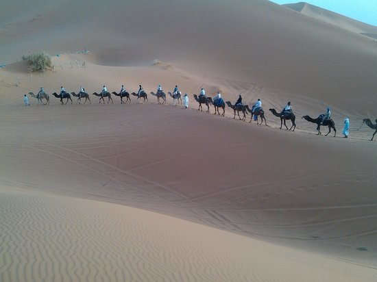 Enjoy Morocco Day Tours