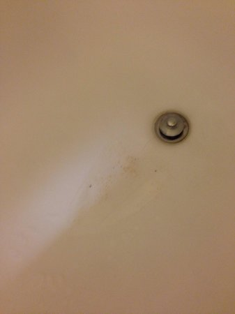 Quality Inn & Suites Birmingham Highway 280 : Stains and dirt in the bottom of the bathtub