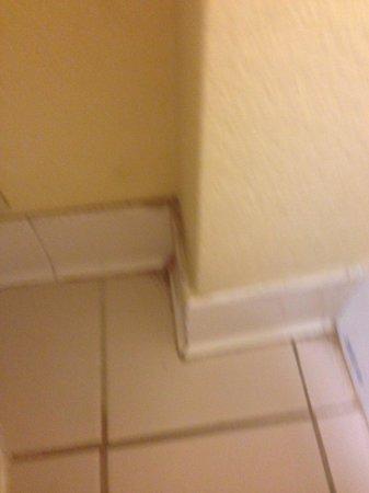 Quality Inn & Suites Birmingham Highway 280: Floor of bathroom