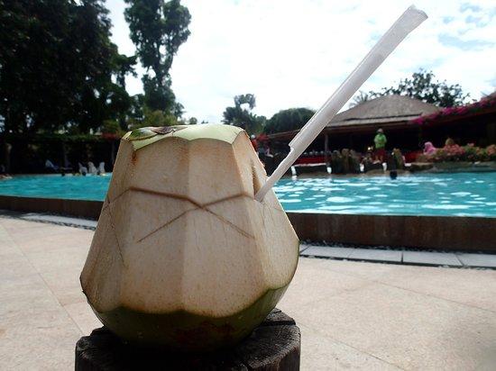 Bluewater Maribago Beach Resort: ヤシの実ジュースを飲みながらゆったりと