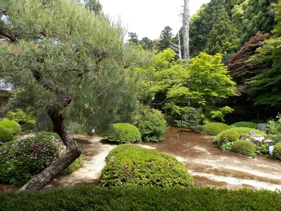 Unryuin: 雲龍院 庭園