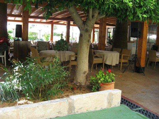 Plazamar Serenity Resort: All inclusive restaurangen