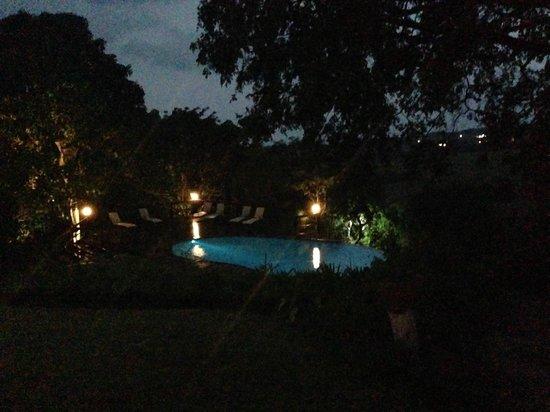 Abangane Guest Lodge: Pool at night