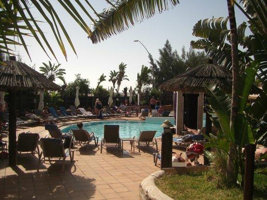 IFA Altamarena Hotel : Herrliche Grünalnagen mit Sträucher und saubere Poolanlagen