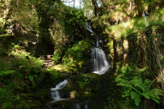 Aberdunant Hall Holiday Park & Hotel: waterfall on woodland walk in hotel grounds