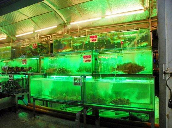 Shogun Suite Hotel: Paluto fresh seafood