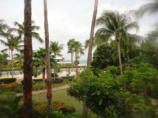 Divi Village Golf and Beach Resort: View from our room, beach across the street